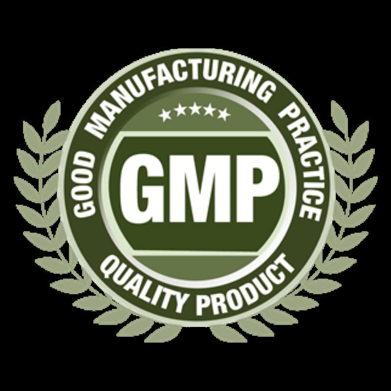 Conservazione cellule staminali del cordone ombelicale - logo GMP